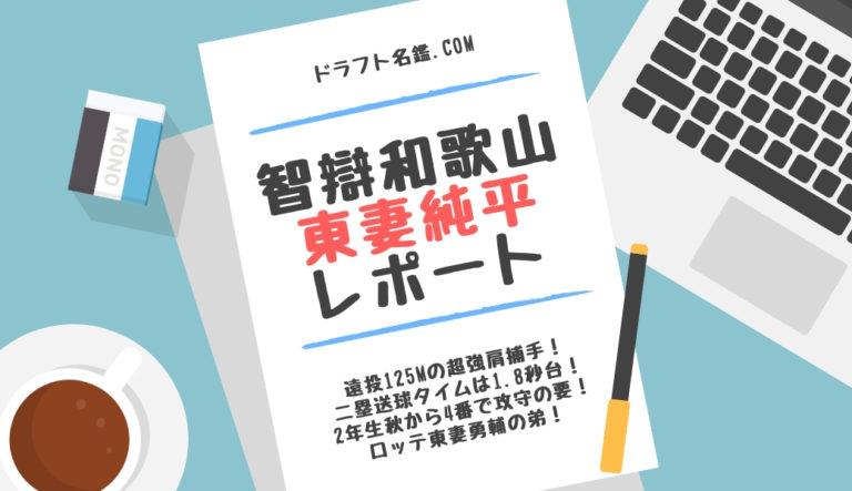 ドラフト2019候補 東妻 純平(智辯和歌山)評価・特徴・動画・スカウト評価