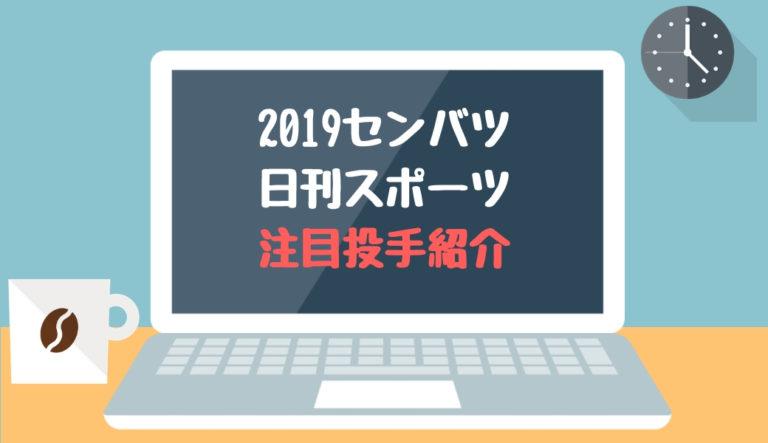 2019春の選抜 注目野手特集(日刊スポーツ)