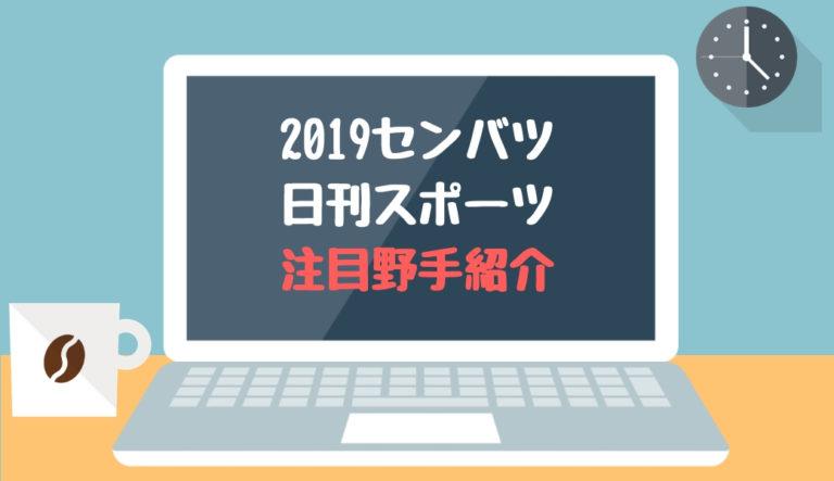 2019春の選抜 注目選手特集(日刊スポーツ)