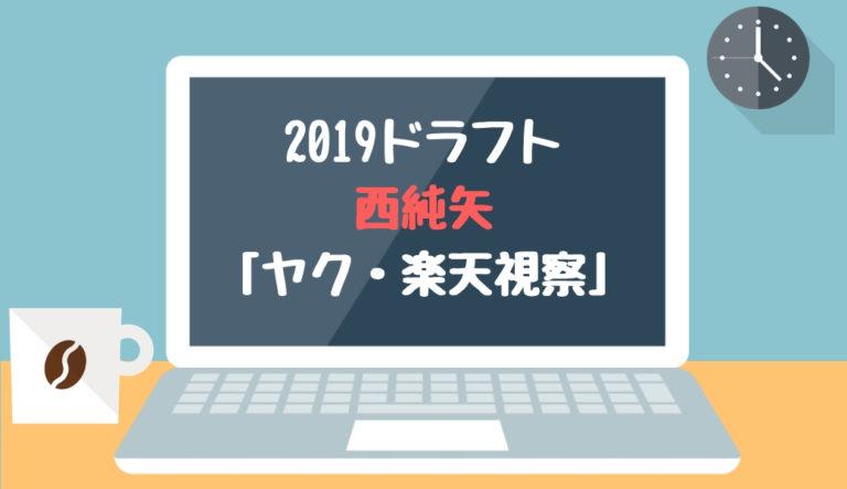 ドラフト2019候補 西純矢(創志学園)「ヤク・楽天視察」