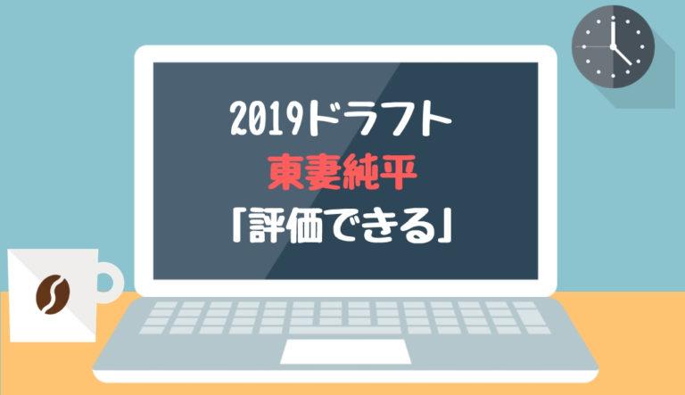 ドラフト2019候補 東妻純平(智辯和歌山)「評価できる」