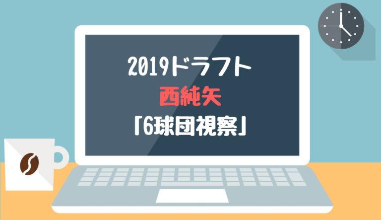 ドラフト2019候補 西純矢(創志学園)「6球団視察」