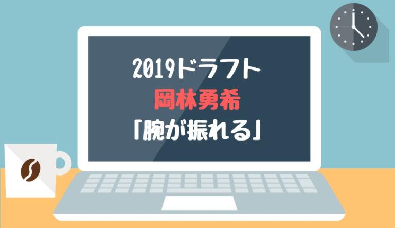 ドラフト2019候補 岡林勇希(菰野)「腕が振れる」