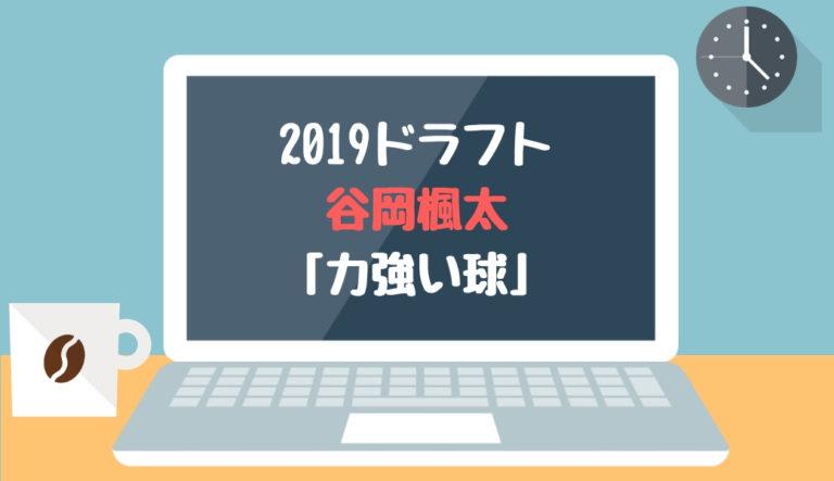 ドラフト2019候補 谷岡楓太(武田)「力強い球」