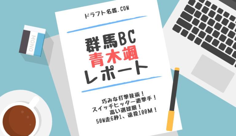 ドラフト2019候補 青木颯(群馬ダイヤモンドペガサス)指名予想・評価・動画・スカウト評価