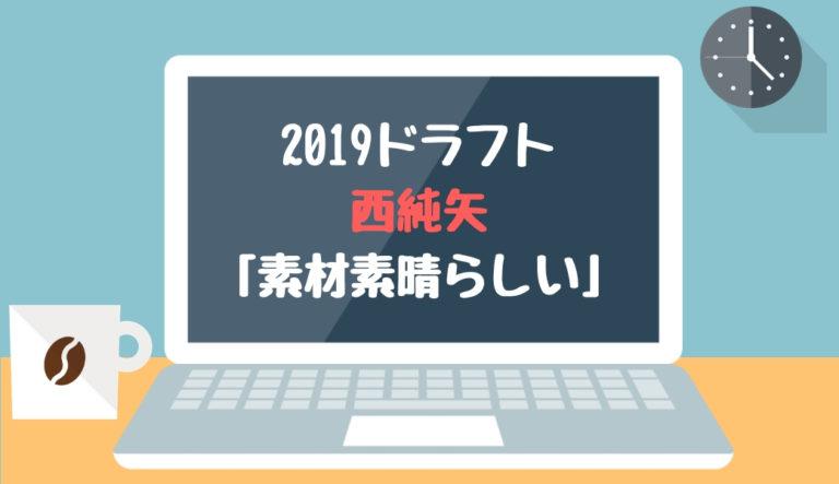 ドラフト2019候補 西純矢(創志学園)「素材素晴らしい」