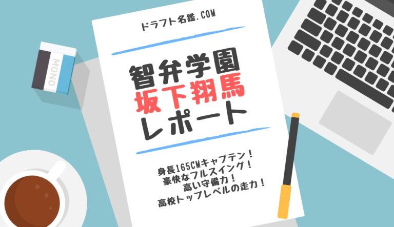 坂下翔馬(智弁学園)指名予想・評価・動画・スカウト評価