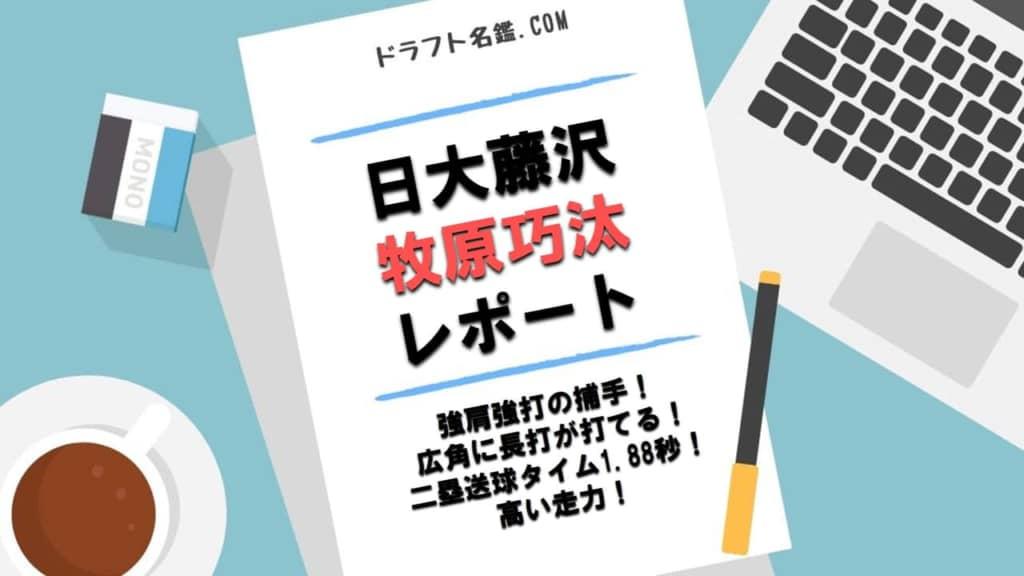 牧原巧汰(日大藤沢)指名予想・評価・動画・スカウト評価