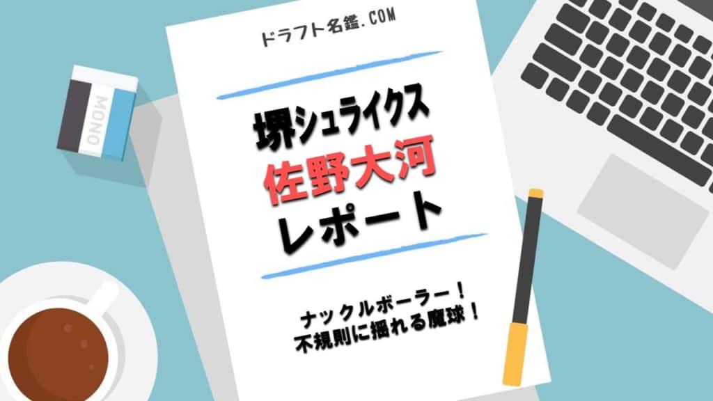 佐野大河(堺シュライクス)指名予想・評価・動画・スカウト評価