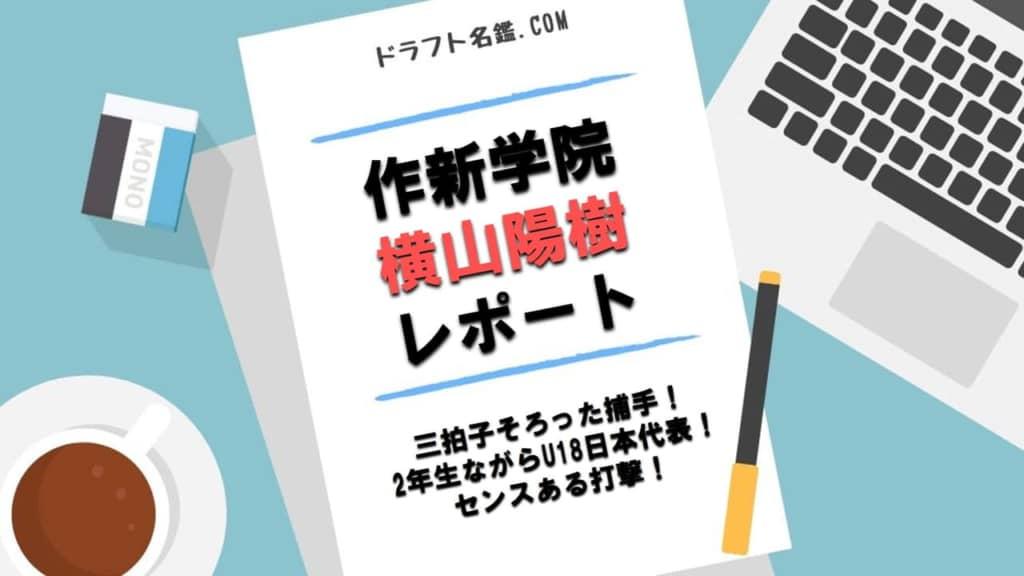 横山陽樹(作新学院)指名予想・評価・動画・スカウト評価