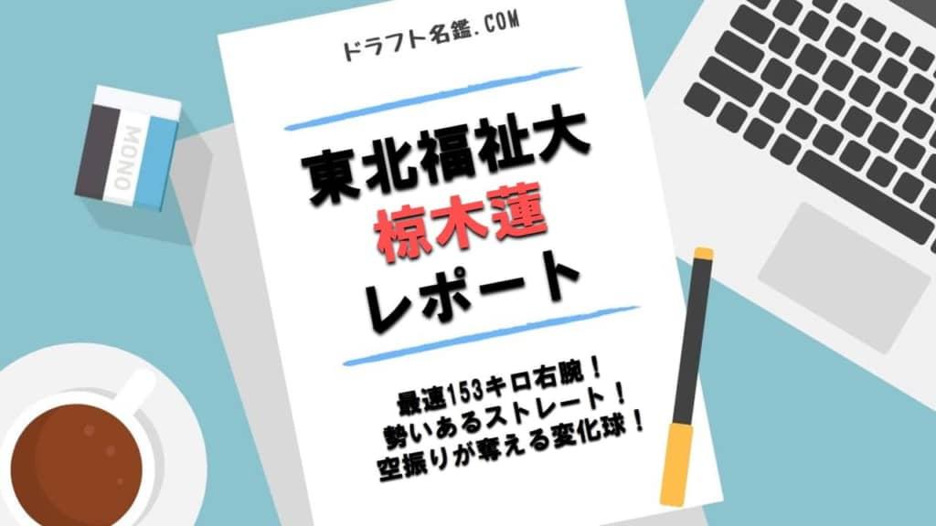 椋木蓮(東北福祉大)指名予想・評価・動画・スカウト評価