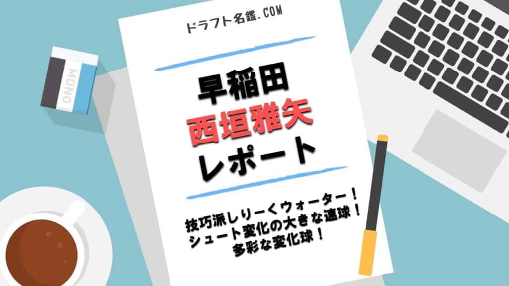 西垣雅矢(早稲田)指名予想・評価・動画・スカウト評価