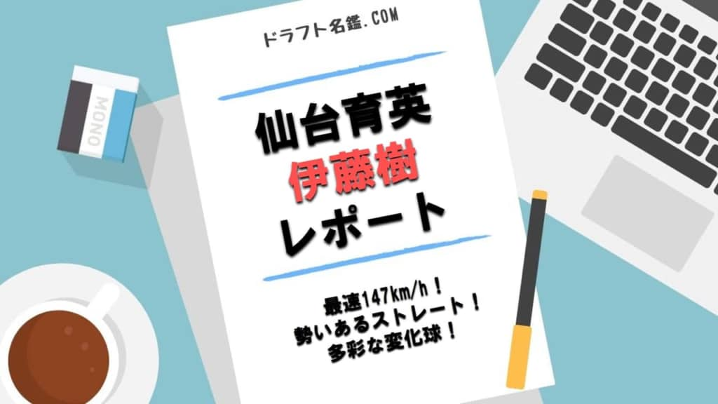 伊藤樹(仙台育英)指名予想・評価・動画・スカウト評価