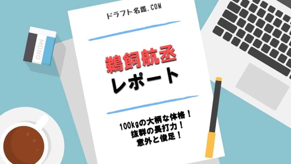 鵜飼航丞(駒澤大)指名予想・評価・動画・スカウト評価